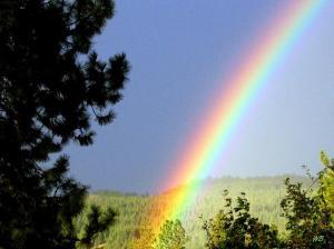 rainbow-covenant