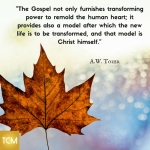 the-gospel-not-only-furnishes-transforming-power-to-remold-the-human-heart