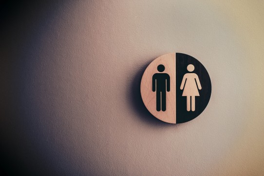 Image of male and female genders